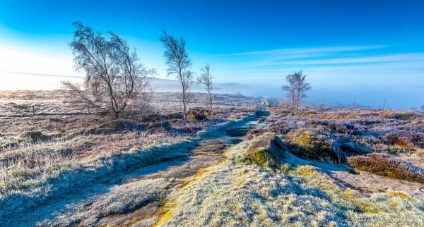 Frost by kojak