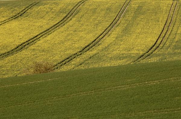 Rural lines by Justine67