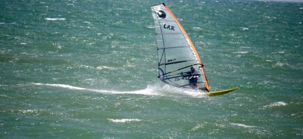 archive windsurfer by sparrowhawk