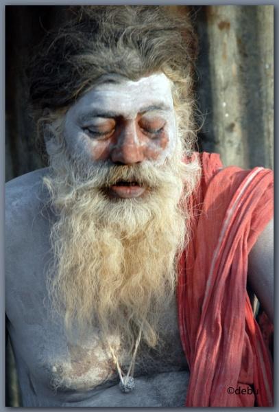 Indian Sadhu(Holy Man) by debu