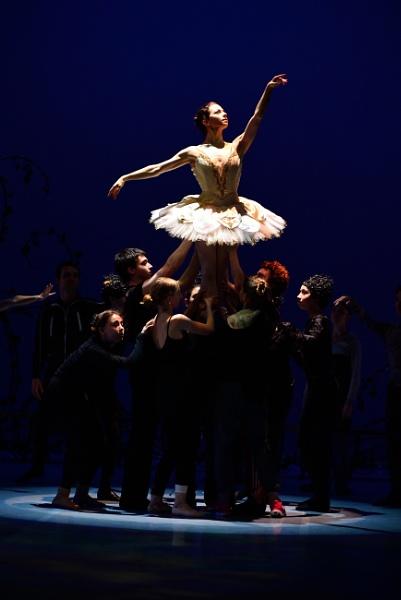 Tchaikovsky\'s Sleeping Beauty - the finale by DouglasMorley