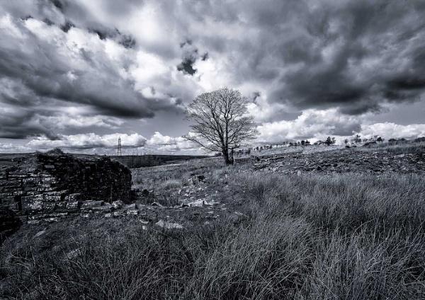 Storm Brewing by martindun