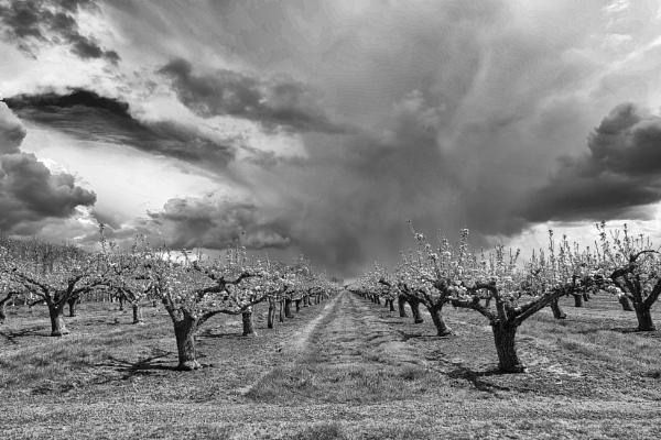 heavy skies by AlexandraSD