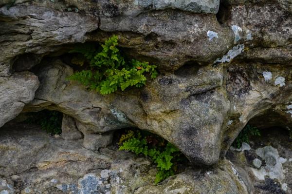 Bridestones Detail by Rick51