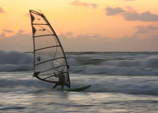 Surfer by SHR