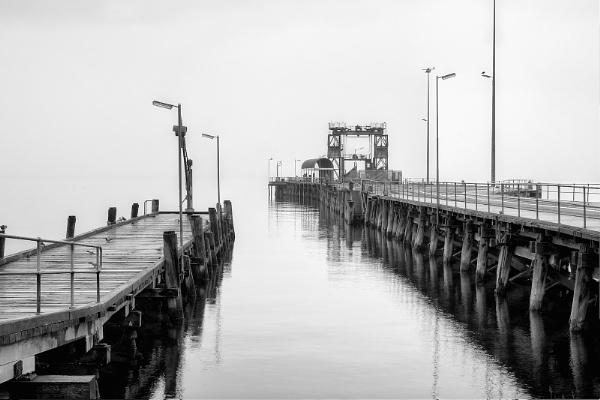 Misty by albertross