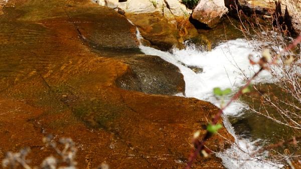 Oak Creek by bwarnke
