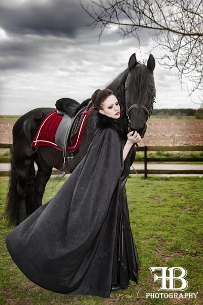 Black Beauty by FionaB