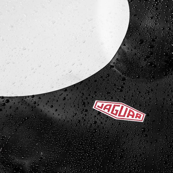 Raindrops beading on a Jaguar\'s Bonnet at Goodwood by Phil_Bird
