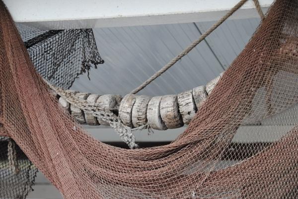 Netting it! by Chinga