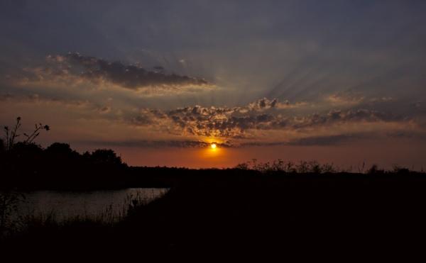 Sun Rays by ttiger8
