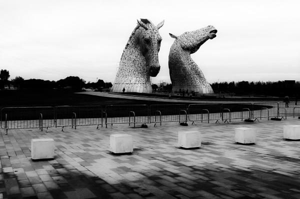 Kelpies study by Griff2012