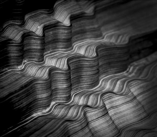 Leaf Valleys by CeriDJones