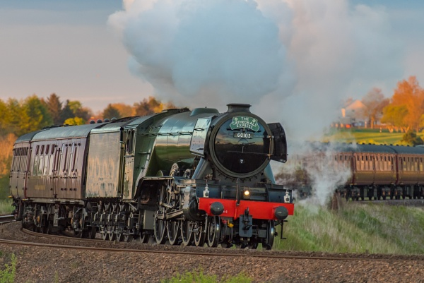 The Flying Scotsman by McBrian