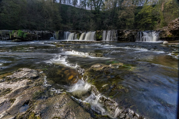 Aysgarth Falls by petra16