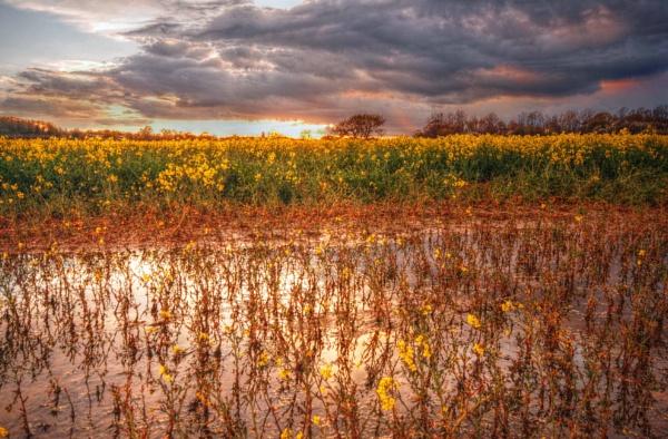 stormy sunset by jayhyk