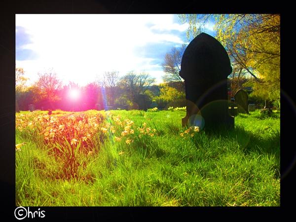 Sunrise on the Graveyard by ChrisBilton