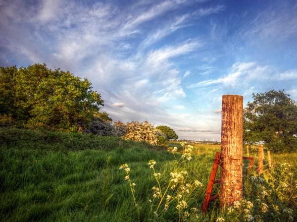 Old gate by jayhyk