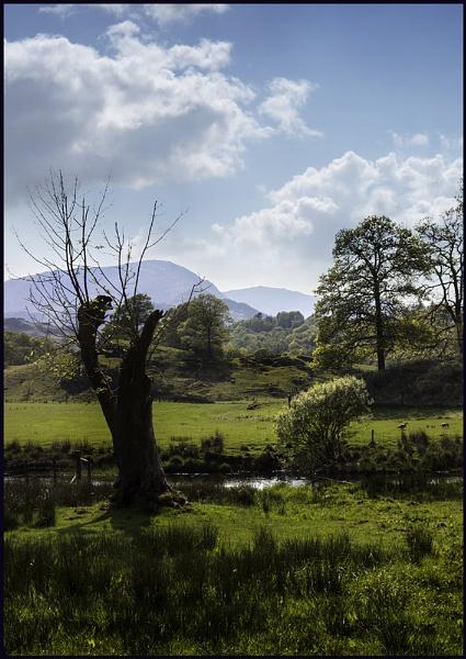 Bit of Langdale. by Niknut
