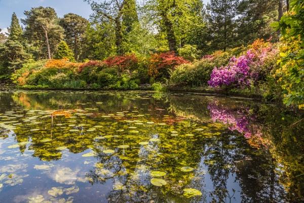 Tatton Park by MalcolmS