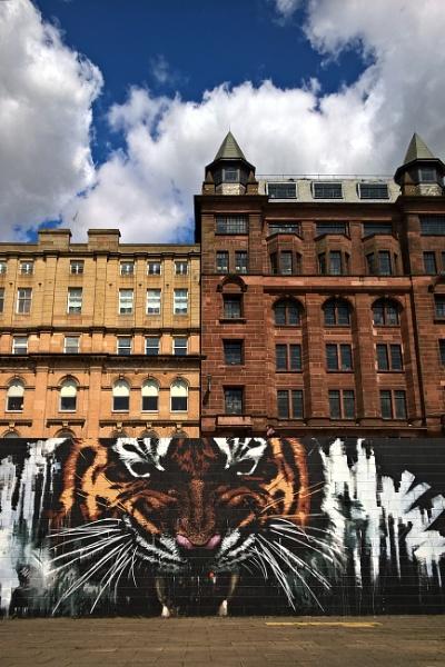 Glasgow grrr! by Bluewave42