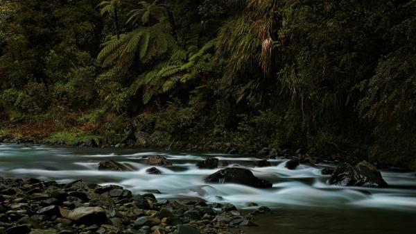 Waioeka Gorge, NZ by kiwibird