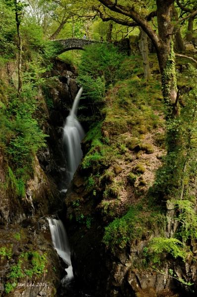 Spring Falls by janlea