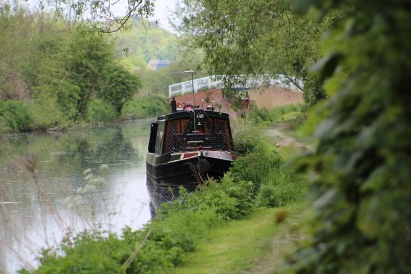 Along the Riverbank by freewilluk