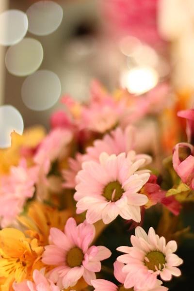Celebration Flora by RoshieK