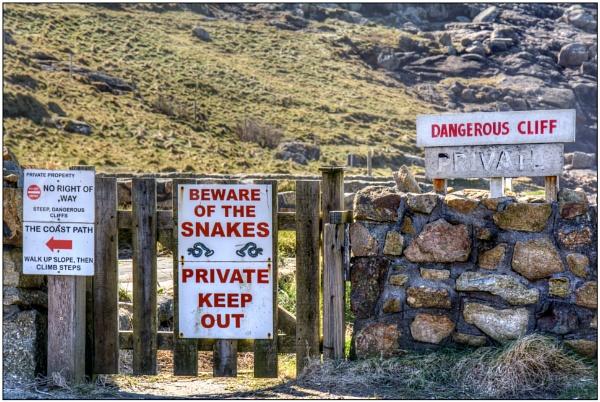Beware of the Snakes! by TrevBatWCC