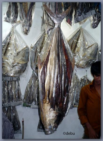Sun Dried Fish... by debu