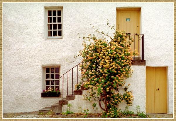 Windows & Doors by fificat100