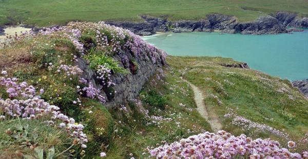 Polly Joke Bay, Cornwall. by robertphillips