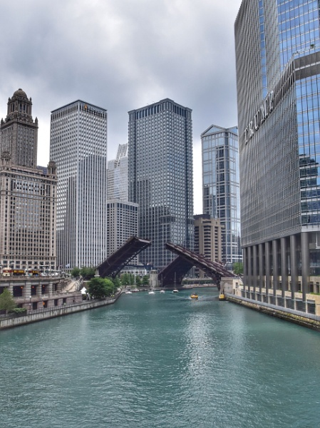 Chicago by ColleenA