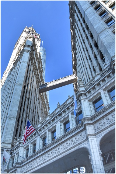 The Wrigley building by ColleenA
