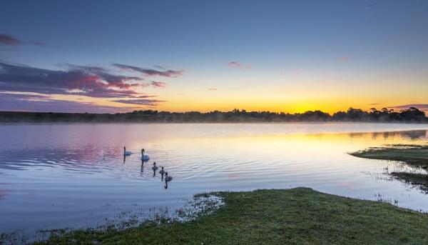 Swan Lake by NickLucas