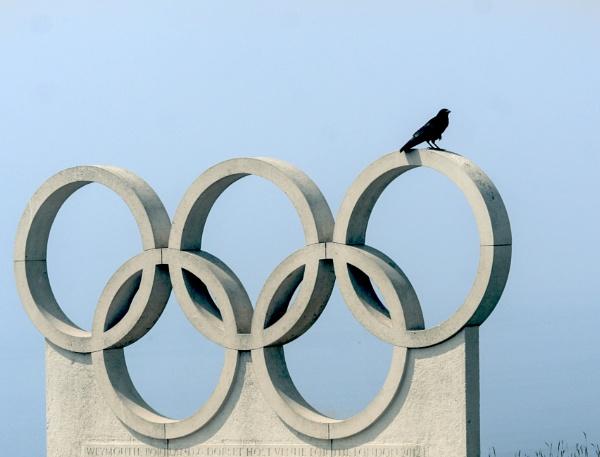 Black bird on a ring by Kurt42