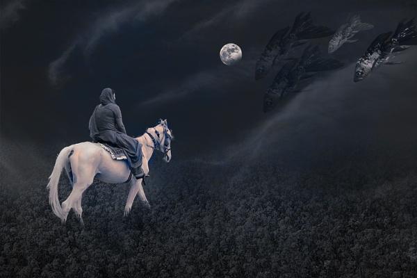 Moonlight Rider by Deep_Bhatia