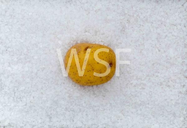 Salzkartoffel macro als Hintergrund mit Salz by wsfeph