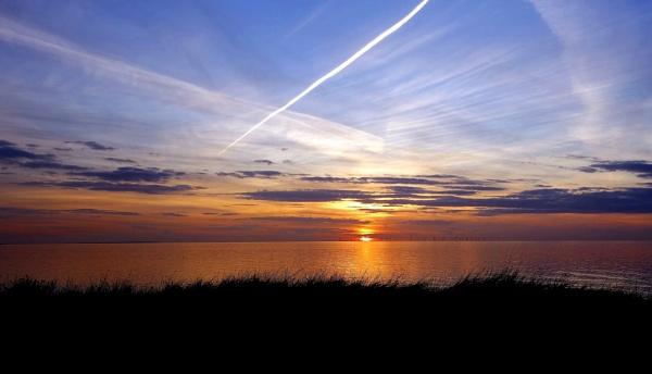 Sea of Gold.Kent Coast England. by newty1