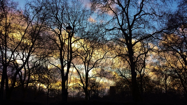 Green Park\'s Sky! by Chinga
