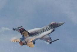 Fluffy F16