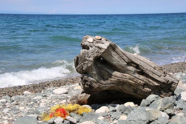 Beachcombing by jocas