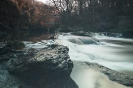 River Roe