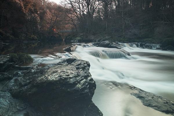 River Roe by RayBrady