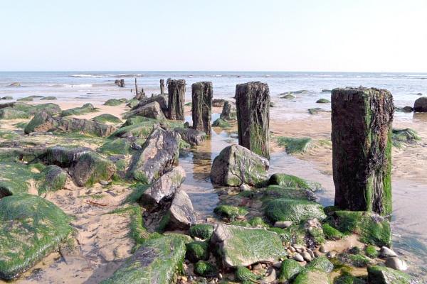 sea groynes by sandy22