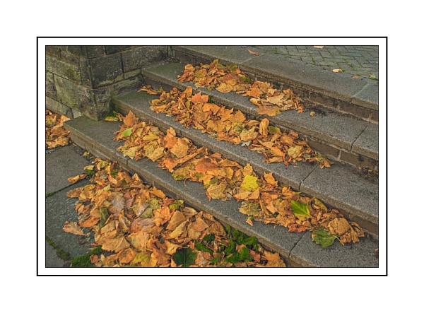 Autumn Steps by bigwheels