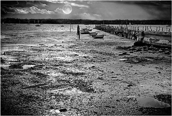 Mud Flats -mono by bigwheels