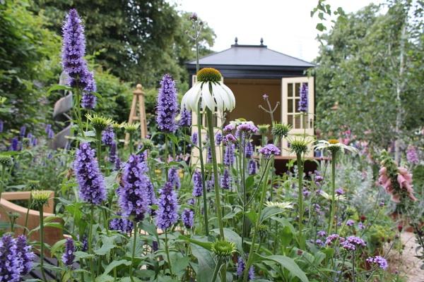 In the garden by davies_m