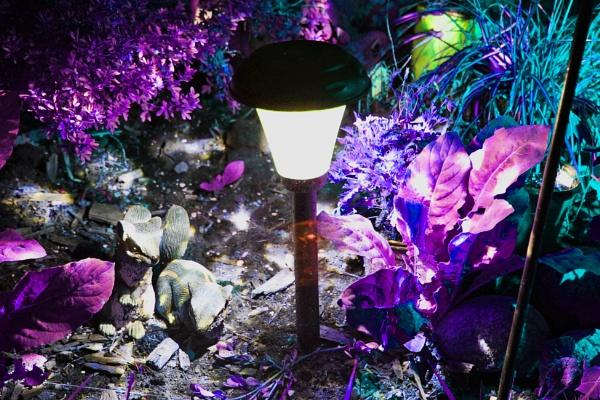 Vibrant Night by DMac360